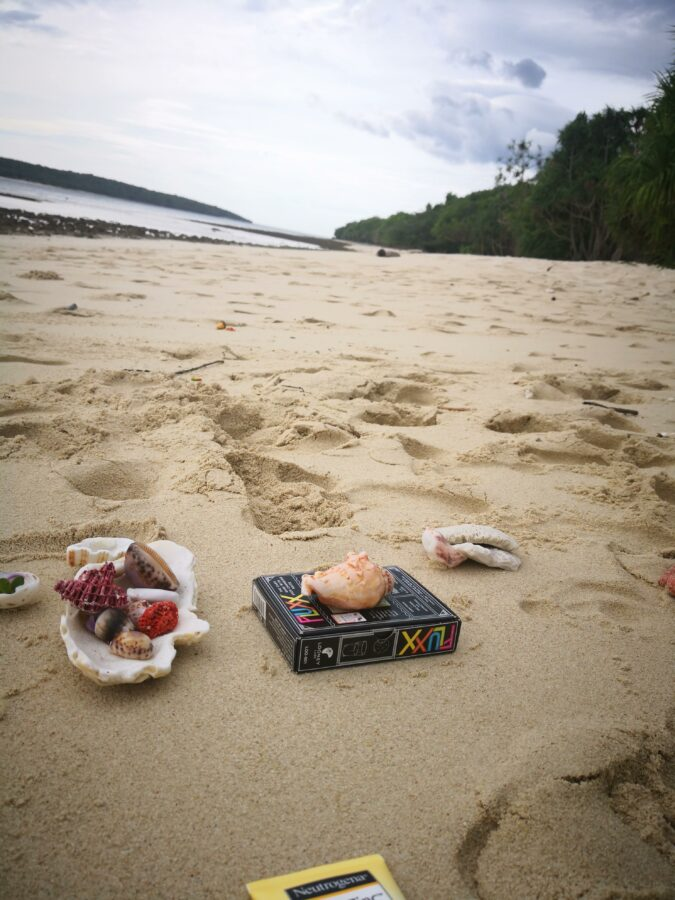 Shells and Fluxx (an excellent card game) arranged on the beach