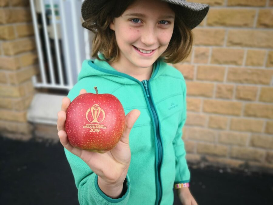 Apple/cricket ball